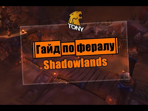 PvP Гайд по ферал друиду Shadowlands 9.0