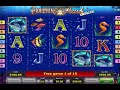 Dolphins Pearl Deluxe - Free Spin Bonus Round