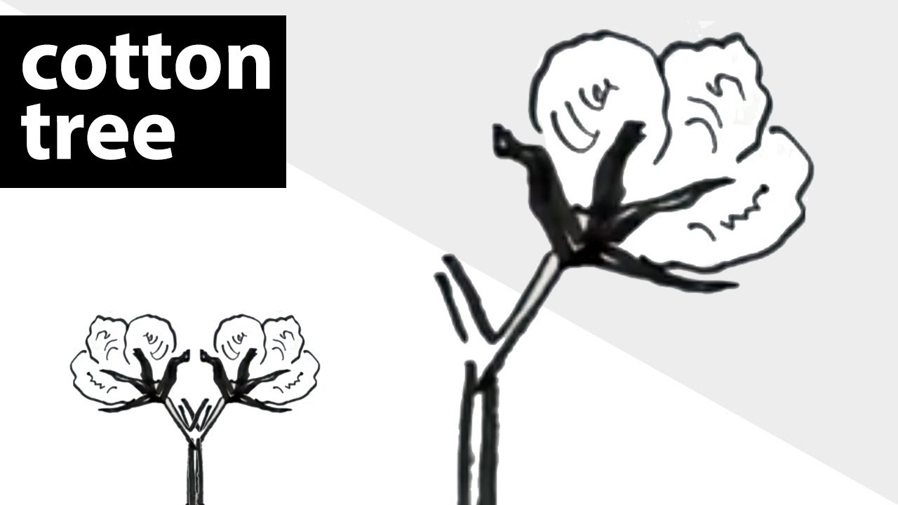 How To Draw A Cotton In A Tree Learn To Draw Easy Drawings