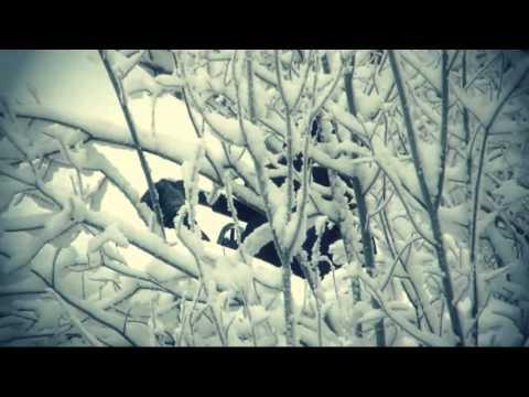 Военно спортивная игра Лазертаг зимой