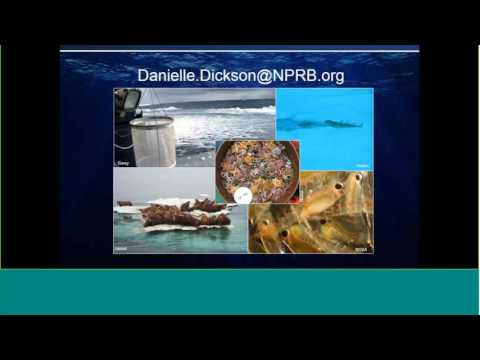 Update on the North Pacific Research Board (NPRB) Chukchi Sea Integrated Ecosystem Research Program