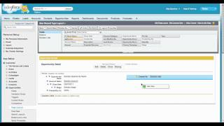 Creating a Record Type and Page Layout in Salesforce.com