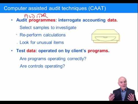 Acca F8 Computer Assisted Audit Techniques - YT