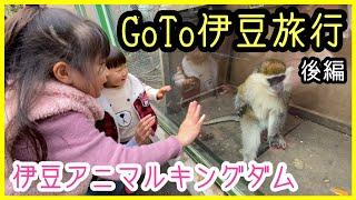 【伊豆旅行】GoToトラベルで行く伊豆アニマルキングダム