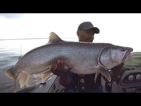 Trophy Lake Trout - Manitoba Hot Bite