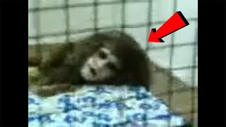12 Scary Videos That WON'T Tuck you in Tonight