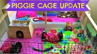 Guinea Pig Cage Updates! June 2014 Thumbnail