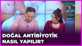Doğal Antibiyotik Nasıl Yapılır? | Dr  Feridun Kunak Show | 28 Ocak 2019