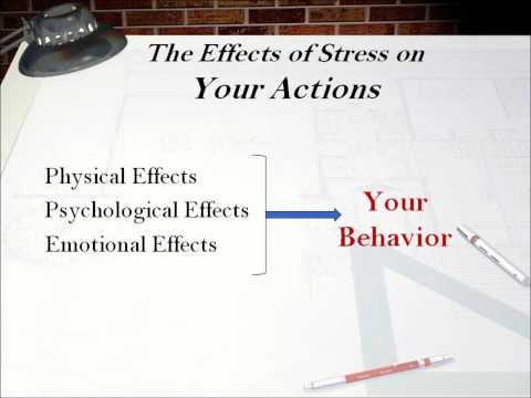 6 Stress in Action