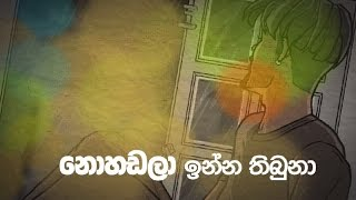 Nohadala Inna- Hashan Balasuriya Ft Sai (Animated Lyric Video)