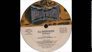 Dj Skryker   Steps in the obscurity