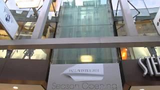 Dedico questo video a: paolo, alex, daniele, aldo, massimo e agli altri appassionati di ascensori/i dedicated this at: mass...