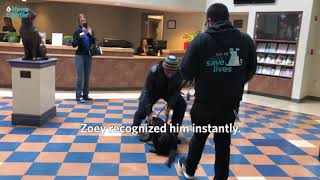 Dog Reunited with Owner after Six Years