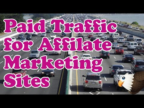 Paid Traffic For Affiliate Marketing Websites