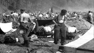 Video Image Ope Ohio Archivist – Meta Morphoz