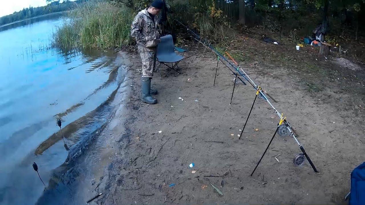 Рыбалка карпа на резинку