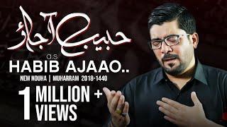 Nohay 2018 - Habib ع Aa Jao   Mir Hasan Mir New Noha 2018-19   Muharram 1440H Nohay   Nohay 2019