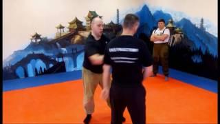 Защита от ударов руками Скорость Плоскости Опора Рычаги Комбинации Обучение Стиль Соловьева