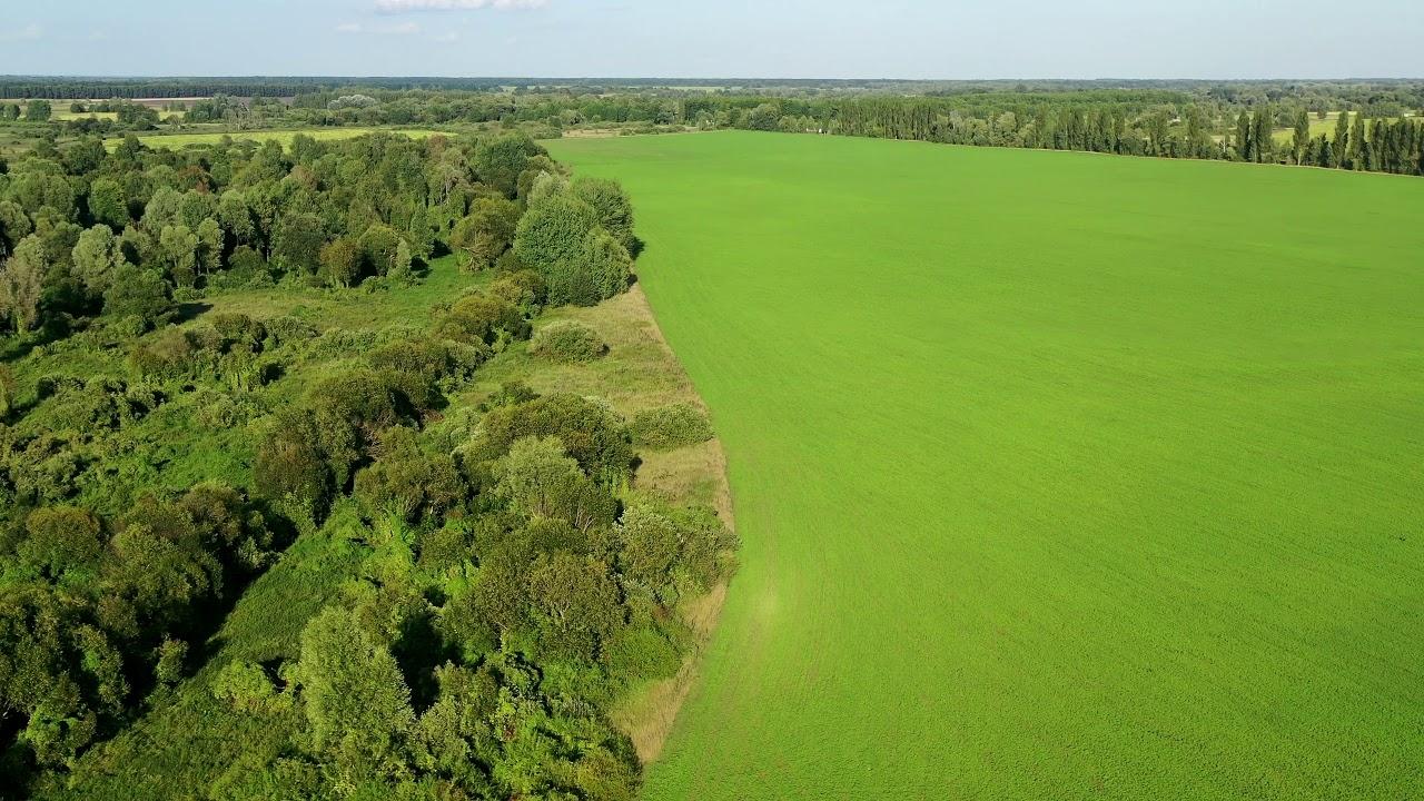 украинская лесостепь картинки сейчас