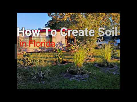 How To Make Soil In Florida