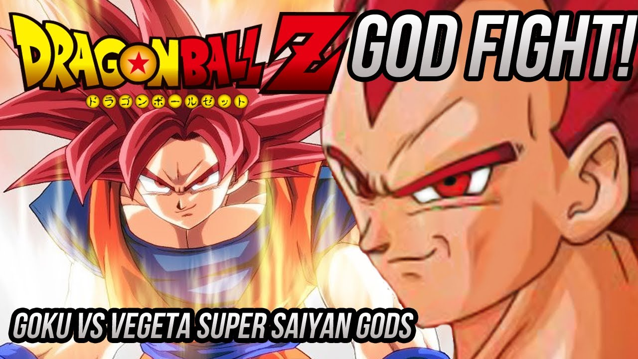 Dragon Ball Z Super Saiyan God GOKU VS SSG VEGETA