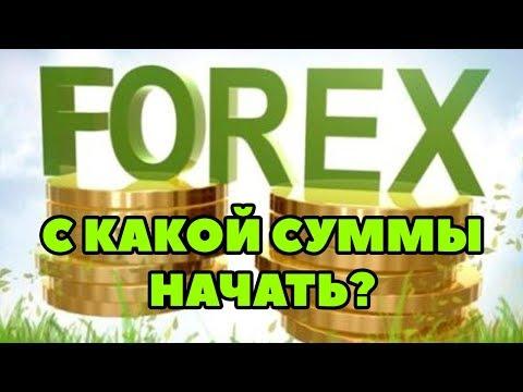 С какой суммы начать торговать на Форекс? Как правильно торговать на Форекс новичку?
