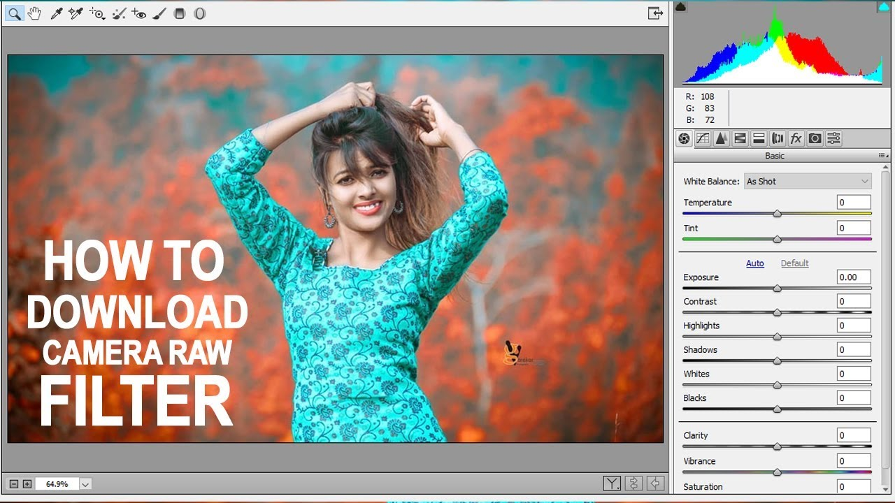 camera raw for cs6 free download