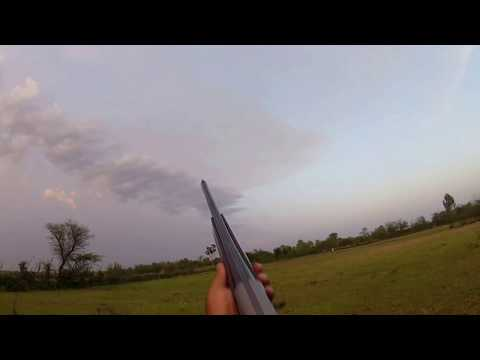 Dove Hunting In Pakistan With GoPro Cam