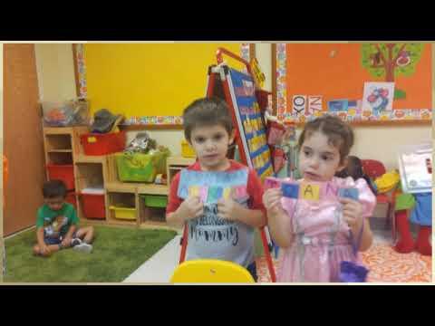 OWLS LIFE IN PAIDEIA SCHOOL