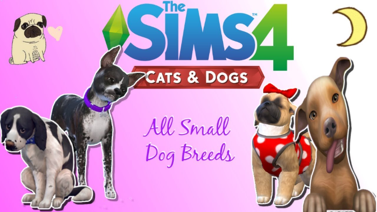 The Sims 4 Cats And Dogs All Small Dog Breeds Youtube