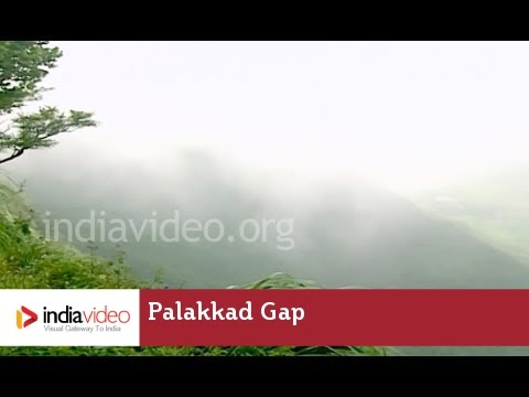 Palakkad Gap - The lowest mountain pass in the Western Ghats