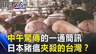 中午驚傳的一通簡訊 被殺不了、凍不死的中國、日本豬瘟夾殺的台灣!?關鍵時刻 20181212-6朱學恒