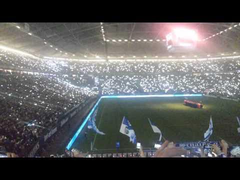 Schalke 04 - Hoffenheim  1:0