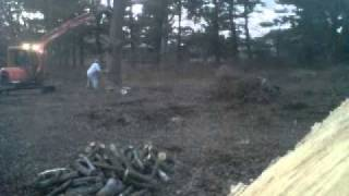 Repeat youtube video Two Idiots Cutting a Tree Down