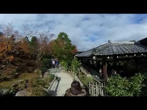 Enjoying Tenryu-Ji Temple pt.1 (360)