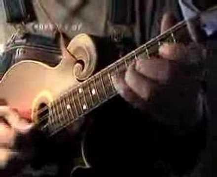 Ten Years Gone -- Led Zeppelin -- mandolin - YouTube