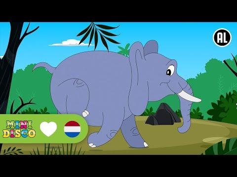 Ze Kunnen Zeggen Wat Ze Willen | Kinderliedjes | Liedjes voor peuters en kleuters | Minidisco