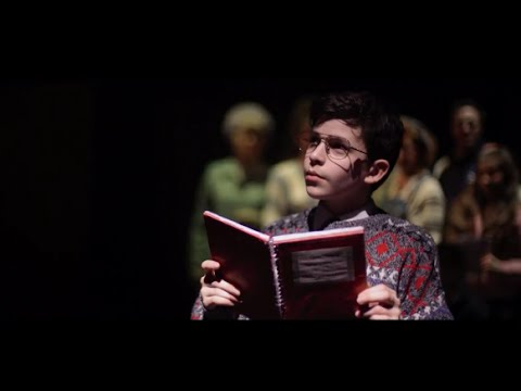 The Secret Diary of Adrian Mole Aged 13 & 34  Theatre Trailer