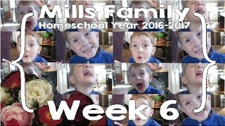 mills family homeschool school year week 6 feat ace curriculum large family homeschool vlog