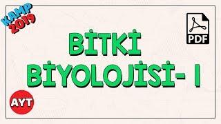 Bitkilerin Yapısı -1 | AYT Biyoloji