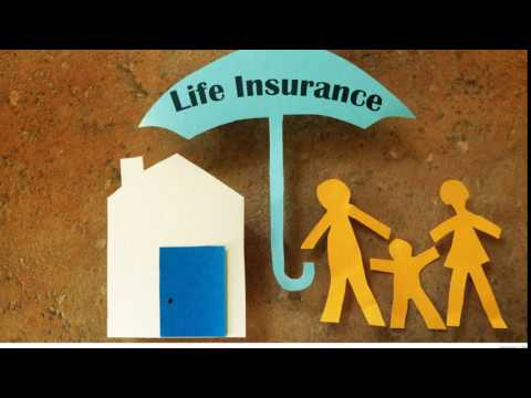 Best insurance in the United States and united kingdom #7