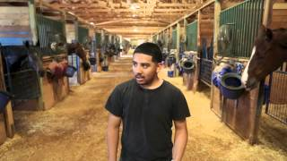 Behind the Scenes at Remington Park - Barn Goats