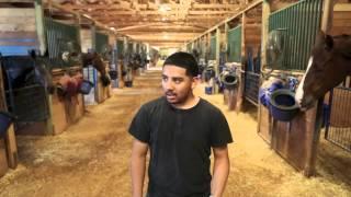 Behind the Scenes at Remington Park - Barn Goats
