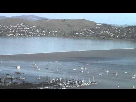 Sausalito Tsunami Surge