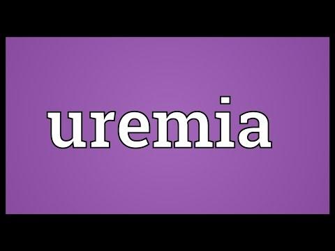 Header of uremia