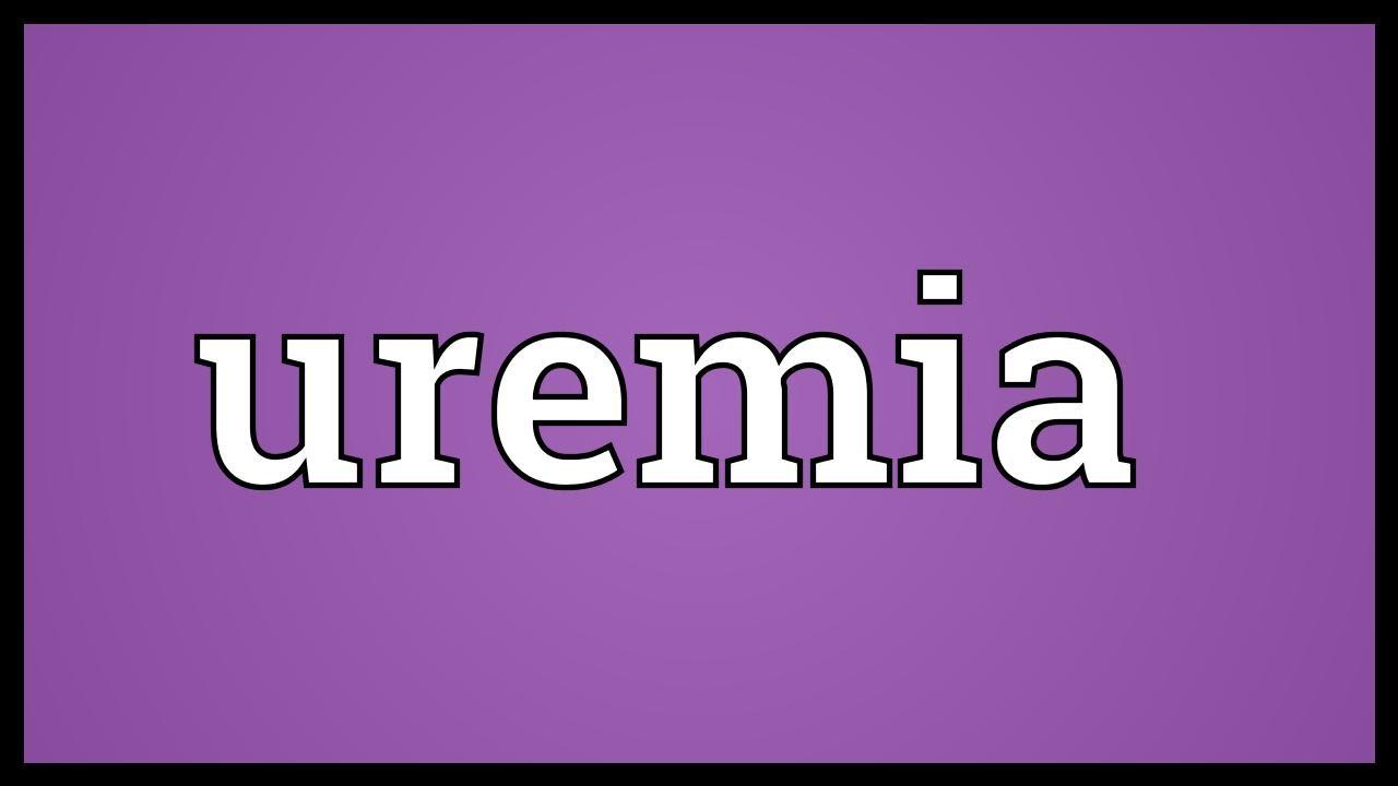 Uremia meaning youtube
