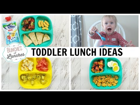 TODDLER LUNCH IDEAS + What He Ate || Bunches of Lunches