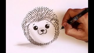 How To Draw A Cute Little Hedgehog Easy