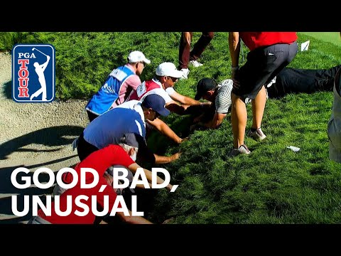 Koepka, Rahm overcome unusual situations, Kokrak's first victory & Poulter's pant game