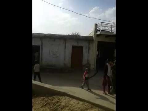 Sinsini village, Deeg, Bharatpur indent site video